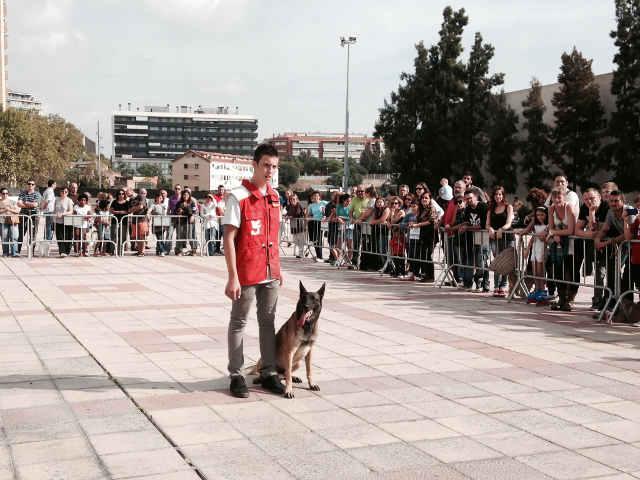 Exhibición Canina Los Guardianes