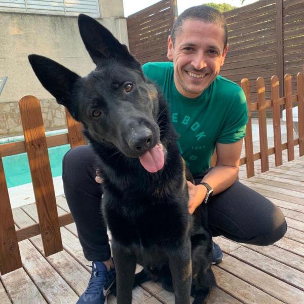 antonio adiestrador canino