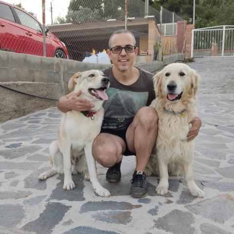 carlos baldo adiestrador con su perro
