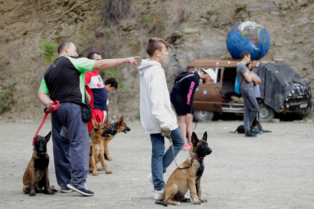 grupo de educacion canina
