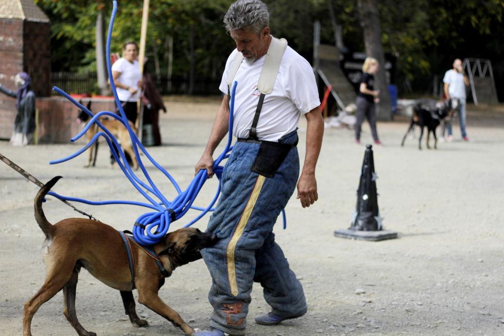 Jean Paul adiestrando perro defensa avanzada