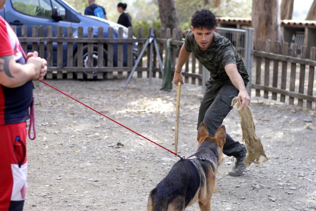 Alumno con perro en defensa deportiva