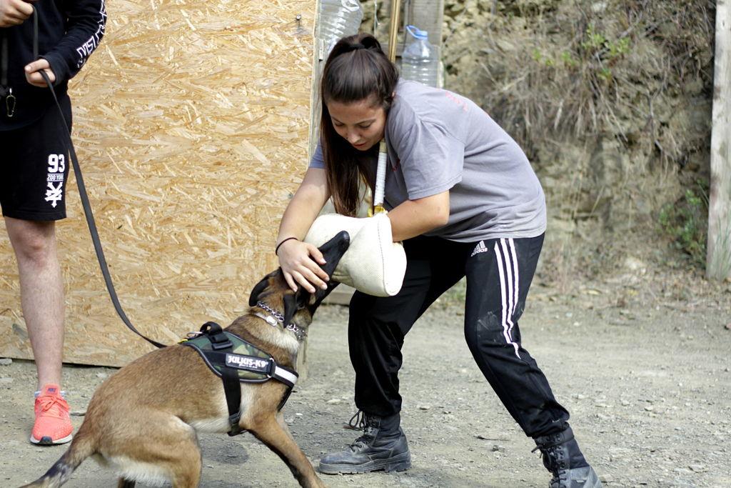 Janet en curso avanzado defensa canina
