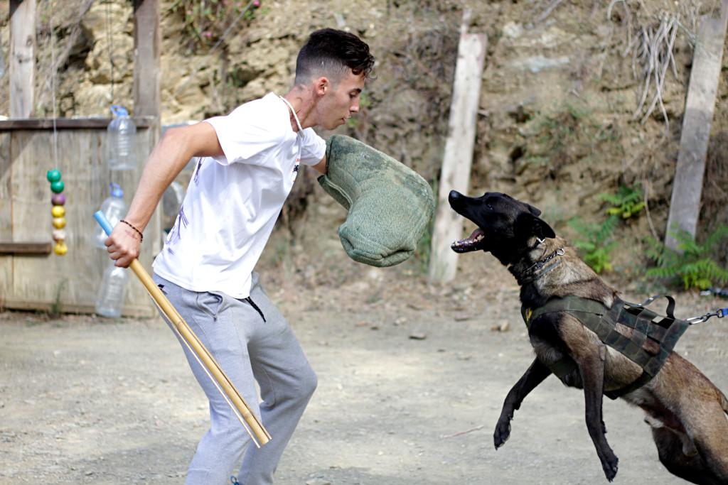 Adam con perro en curso de adiestrador