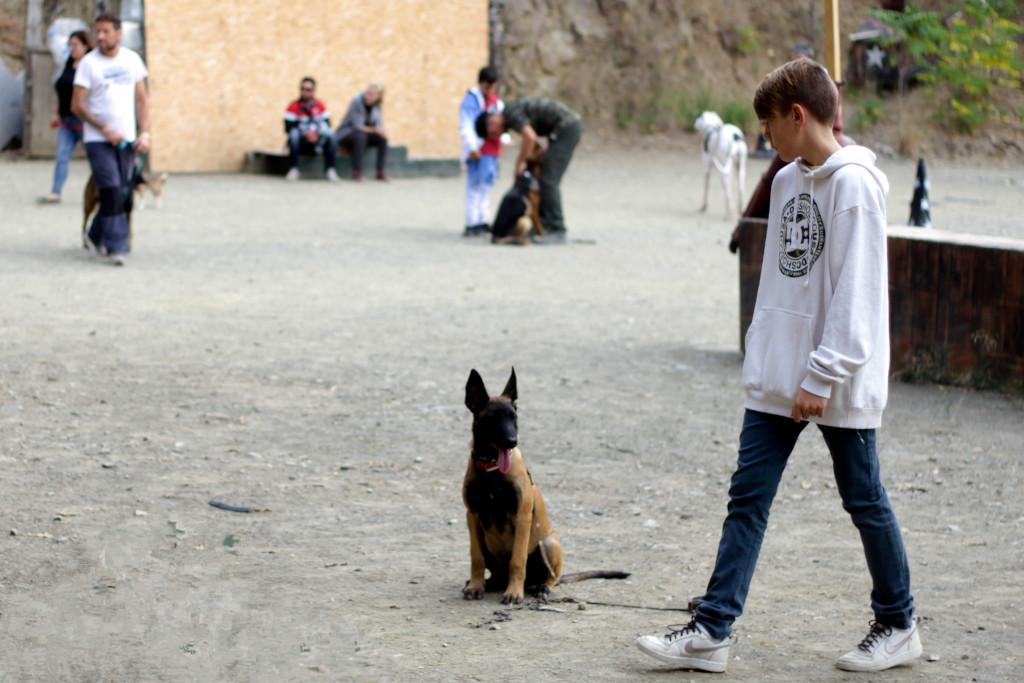 alumno en curso adiestrador canino basico