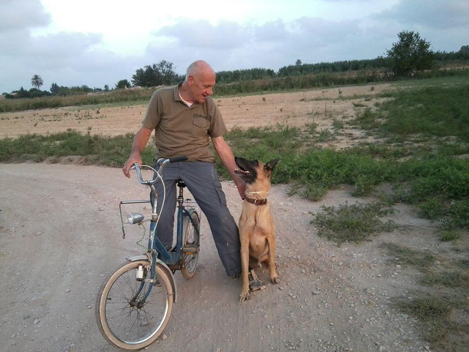 perro con su dueño paseando