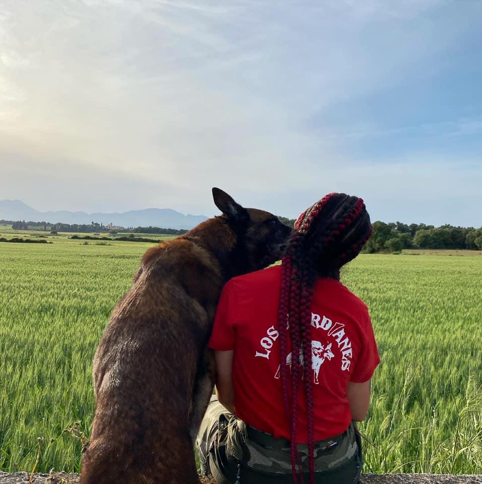 paciencia y cariño con los perros