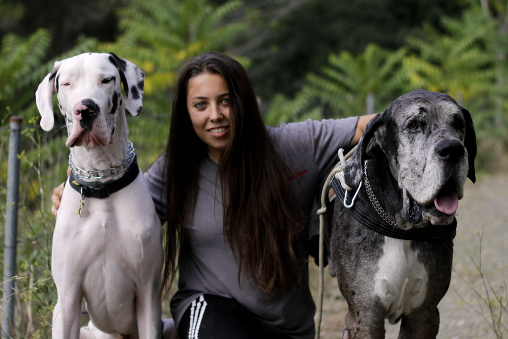 Janet con perros en residencia canina
