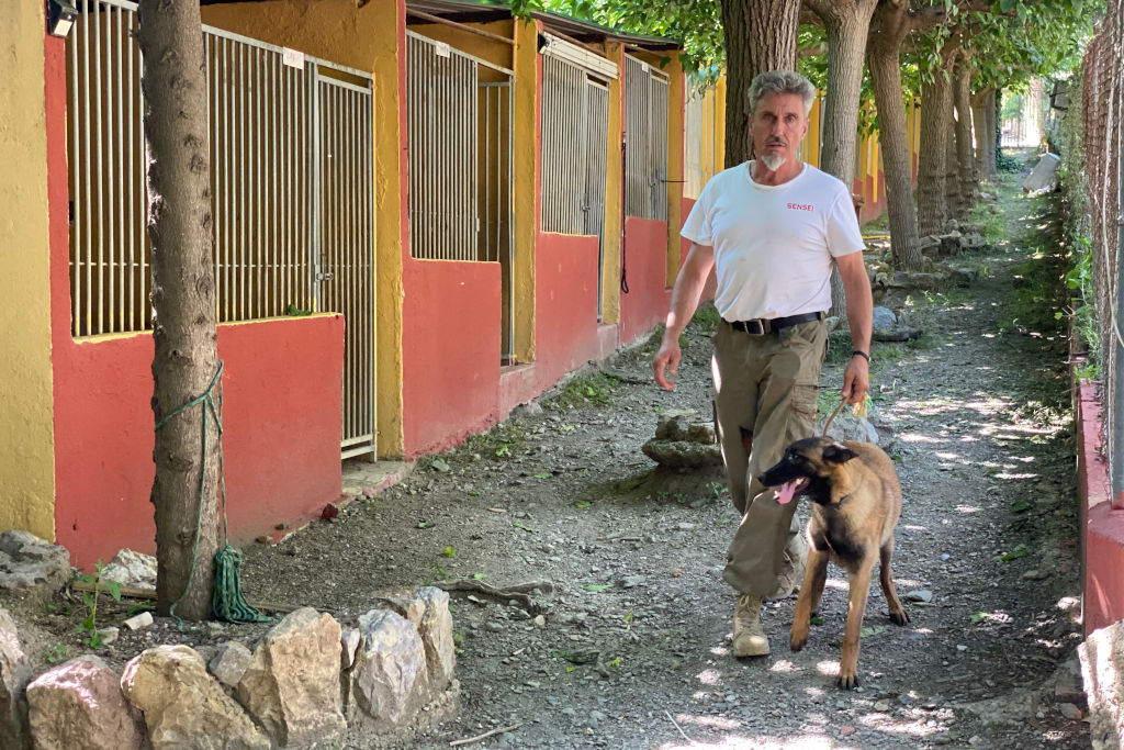 Jean Paul en la residencia canina