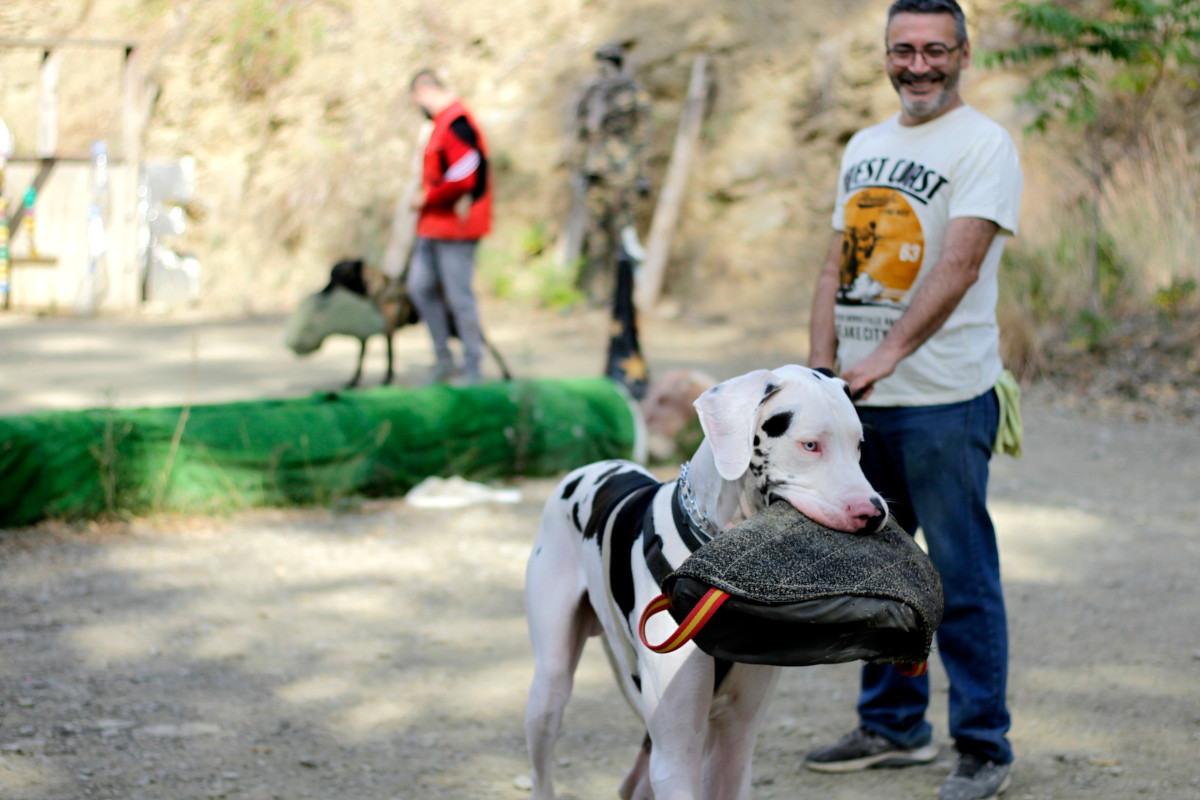 adiestrador canino con su perro